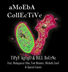 amoeba collective